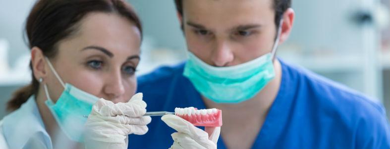 BM Dental Laboratory staff