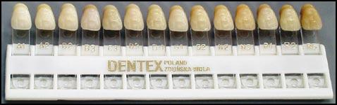 Dentex teeth shades